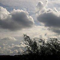 такие разные облака :: Елена Семигина