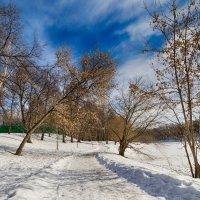 Яркое завершение зимы :: Алексей Соминский