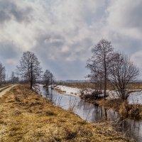 Весна наступает :: Андрей Дворников