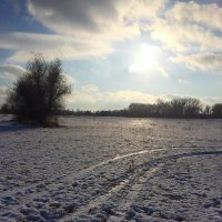 Зима :: Анастасия Ли