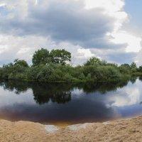 Река Луга :: Serega