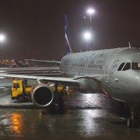 Ожидание полета! :: Frol Polevoy