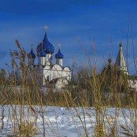 Кремль,вид с Каменки :: Сергей Цветков