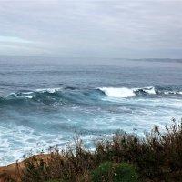 Тихий океан :: Дарья Карелина