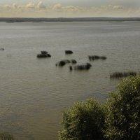 Озеро Неро :: Вячеслав