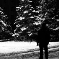 Зимний пейзаж весной :: Дмитрий