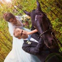 Свадебный конь) :: Ева Олерских