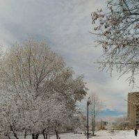 Зимняя осень :: Владимир Куликов