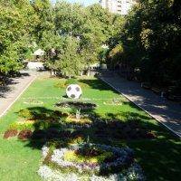 Сентябрь в парке Горького... :: Тамара (st.tamara)