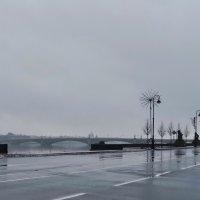 Мой серый город :: Ольга СПб
