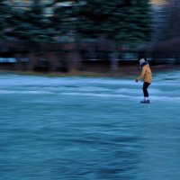 Одна и не скучает... :: Sergey Gordoff