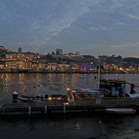 Вечер на реке Дору. :: ИРЭН@ Комарова