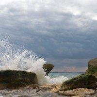 Брызги моря :: Mishka-D2008 ( Мишкина )