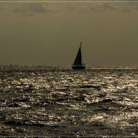 вечернее море :: Petr @+