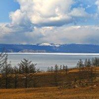 Весна на Ольхоне :: Галина Ильясова