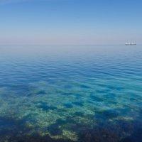 Утром на море :: Nyusha