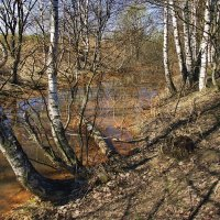 Прозрачна талая вода... :: Лесо-Вед (Баранов)