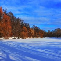 Кузьминки, зима :: Владимир Брагилевский