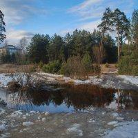 Весна идет :: Валерий Толмачев