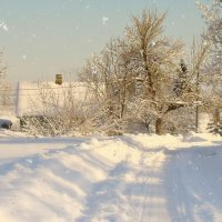 зимний пейзаж :: linnud