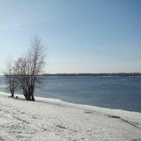 Волжские берега... :: марина ковшова
