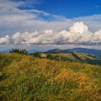 Вспоминая лето :: Андрей Дворников