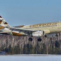 Посадка Airbus  A319, компании  Etihad Airways в аэропорту Минск-2 07 февраля 2017 года :: Сергей Коньков