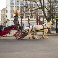 На улицах Берлина :: Александр