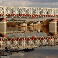 товарняк на мосту через Сож :: Александр Прокудин