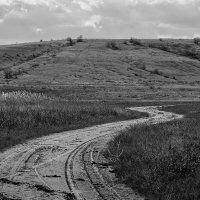 Самая тяжелая дорога всегда ведет к вершине :: Елена Данько