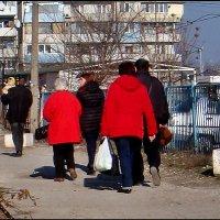 Весна. Все - парами... :: Нина Корешкова