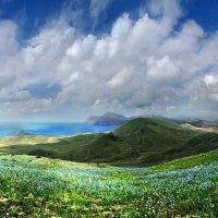 пространства небес, гор, моря, холмов, цветов, земли :: viton