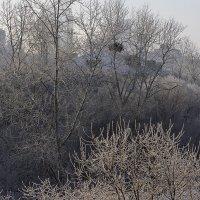 Город в серебряном убранстве :: Оксана Успенская