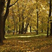 Осень в Коломенском. :: Юрий Воронов