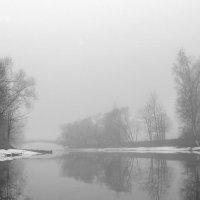 Туман :: Сергей Белоцерковский