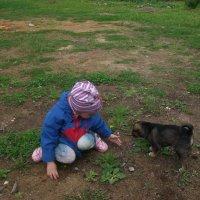 Девочка и щенок. :: ВАЛЕНТИНА ИВАНОВА