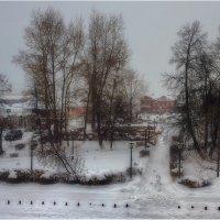 Пасмурный зимний день :: Александр Максимов