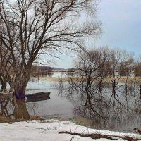 Ожидая скорый ледоход... :: Лесо-Вед (Баранов)