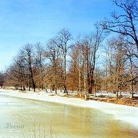 Потеплело. :: Miko Baltiyskiy