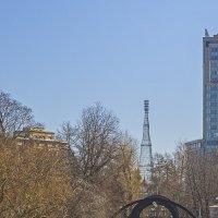 Шуховская башня :: Сергей Фомичев
