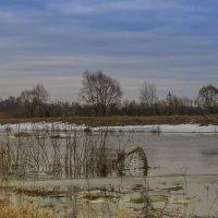 Река Нерль :: Сергей Цветков