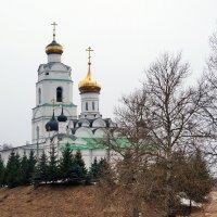 Свято-Троицкий Кафедральный Собор :: Юрий Шувалов