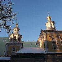 освещёные солнышком :: Олег Лукьянов