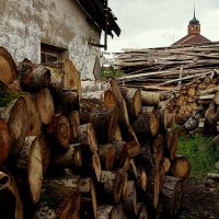На дворе трава, на траве дрова :: Надежда Бахолдина