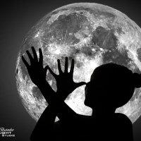 Лунный свет... :: Павел Бутенко