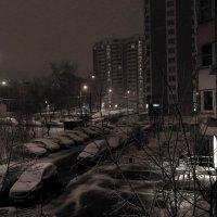 Зима возвращается? :: Андрей Лукьянов