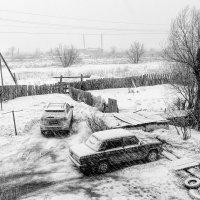Черно-белая весна... :: Вадим Лячиков