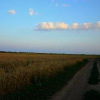 дорога в небо где-то в Украине :: Ирина Божко