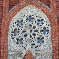 Римско-Католический Кафедральный Собор(Москва) :: Колибри М