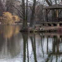 есть в графском парке старый пруд :: Игорь